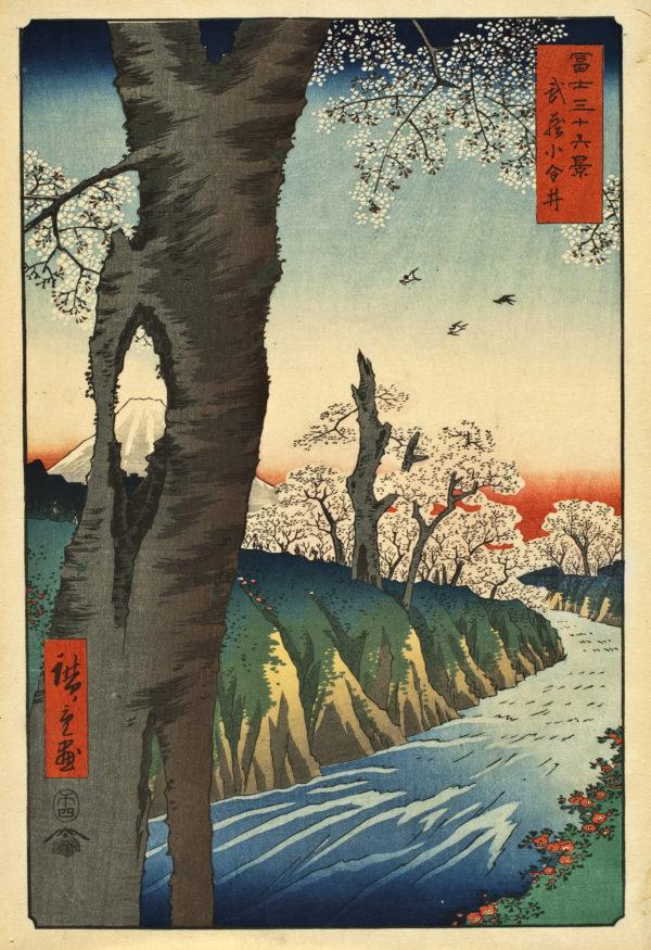 "Hiroshige ""Koganei, Musashi Province"" Archival Digital Print (16"" x 20"" mat)-0"