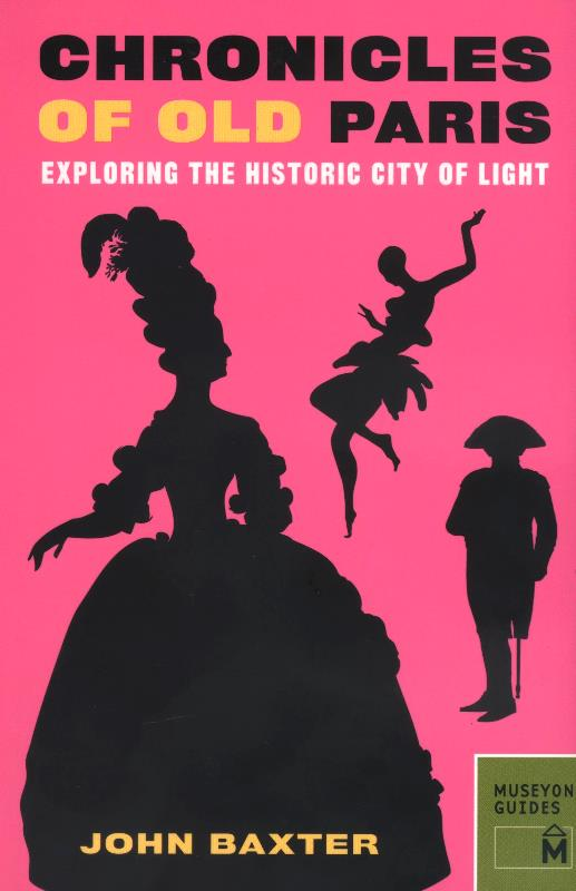 Chronicles of Old Paris: Exploring the Historic City of Light-0