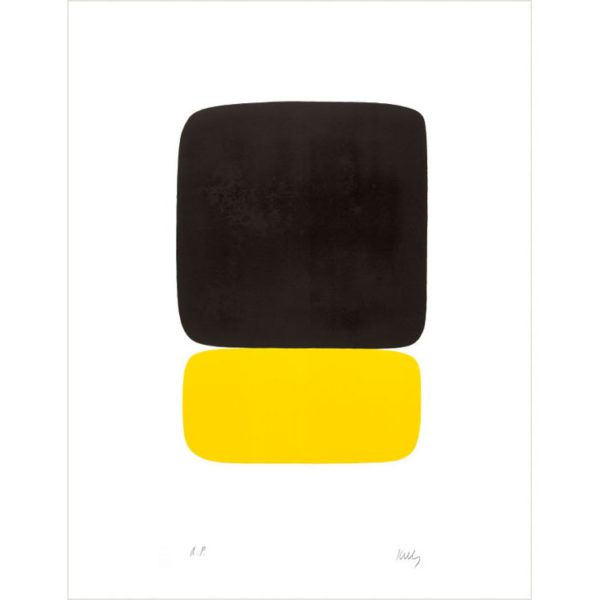 The Color Lithographs of Ellsworth Kelly Boxed Notecards-2311