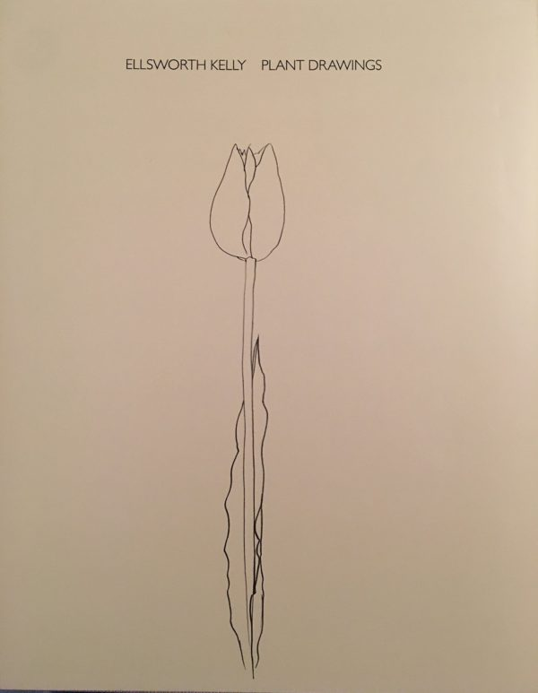 Ellsworth Kelly Plant Drawings-0